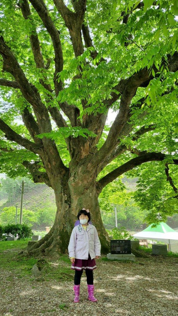 5월 광화원 가족 야외 활동 프로그램 이미지